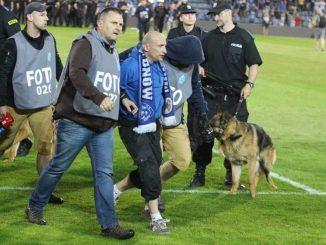 Policja w kamizelkach foto na meczu Ruchu z Górnikiem Łęczna