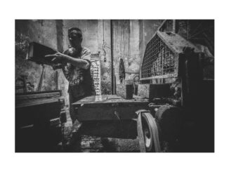 Strycharze - nagrodzone zdjęcie Grzegorza Maciąga